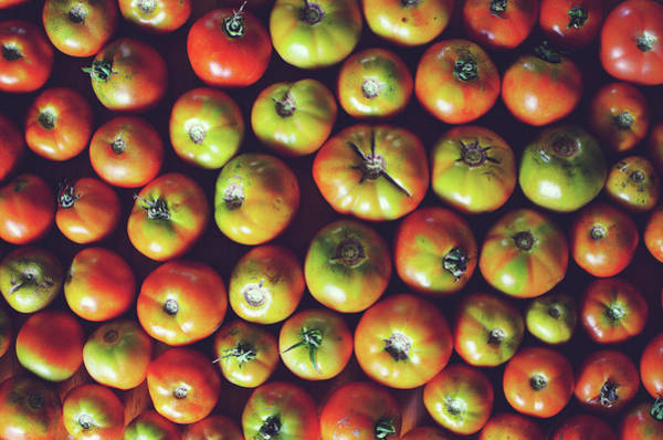 Retail Photograph - Tomatoes by Lisa Gutierrez