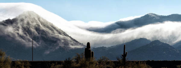 Photograph - Tonto National Forest 4816-022319 by Tam Ryan