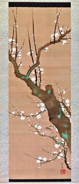 Plums Painting - Top Quality Art - Bush Warbler In A Plum Tree by Sakai Hoitsu