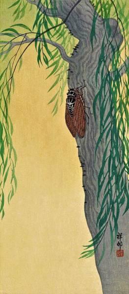 Wall Art - Painting - Top Quality Art - Cicada by Ohara Koson