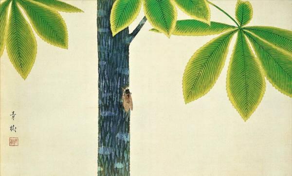 Cicada Wall Art - Painting - Top Quality Art - Cicada by Omoda Seiju