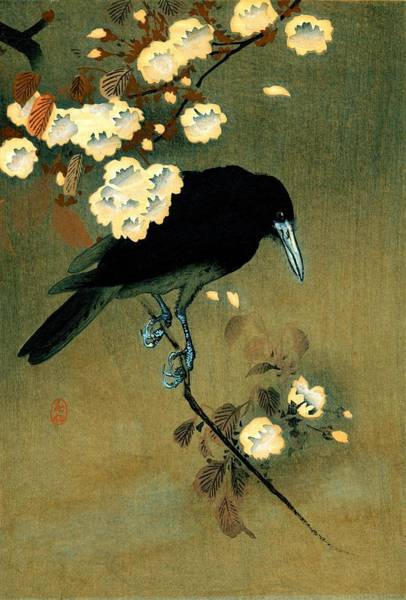 Wall Art - Painting - Top Quality Art - Crow And Blossom by Ohara Koson