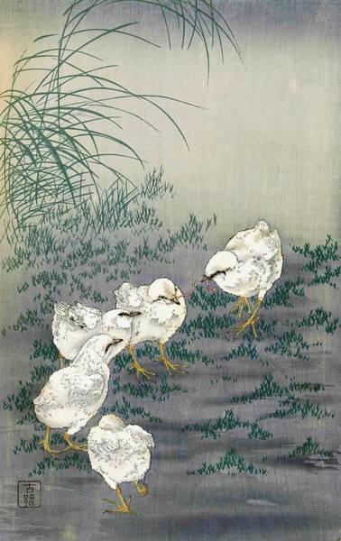 Wall Art - Painting - Top Quality Art - Five Chicks by Ohara Koson