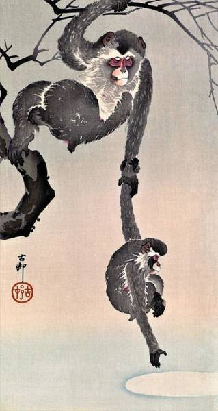 Monkey Painting - Top Quality Art - Grasp Moon by Ohara Koson