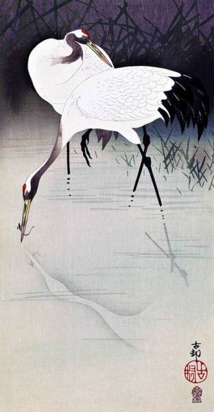 Wall Art - Painting - Top Quality Art - Japanese Crane by Ohara Koson