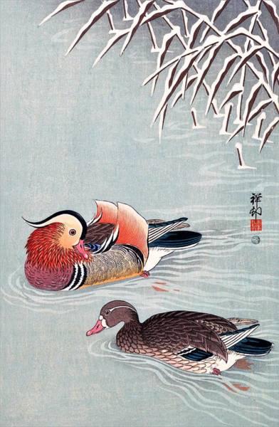 Wall Art - Painting - Top Quality Art - Mandarin Duck by Ohara Koson