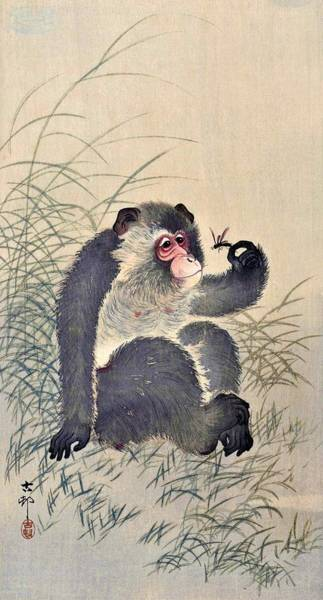 Monkey Painting - Top Quality Art - Monkey And Bug by Ohara Koson