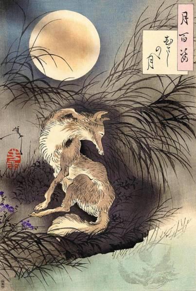 Wall Art - Painting - Top Quality Art - Moon And Fox by Tsukioka Yoshitoshi
