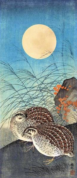 Wall Art - Painting - Top Quality Art - Moon And  Quail by Ohara Koson