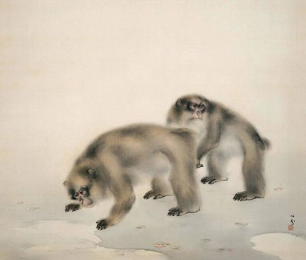Monkey Painting - Top Quality Art - Morning After Rain by Hashimoto Kansetsu