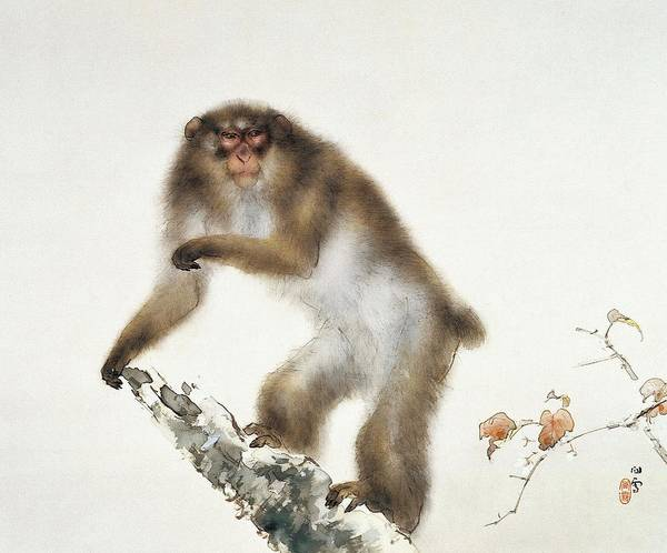 Monkey Painting - Top Quality Art - Old Monkey With Cherry In Autumn by Hashimoto Kansetsu