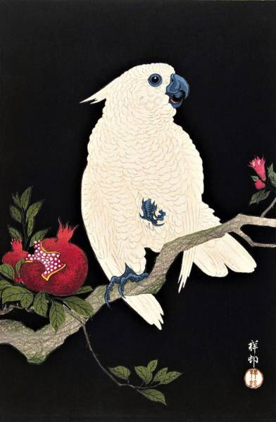 Wall Art - Painting - Top Quality Art - Parrot And Pomegranate by Ohara Koson