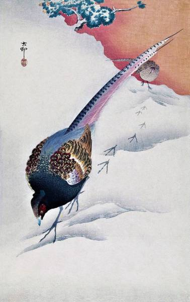 Pheasant Painting - Top Quality Art - Snow And Pheasant by Ohara Koson