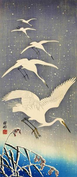 Wall Art - Painting - Top Quality Art - Snows Egret by Ohara Koson