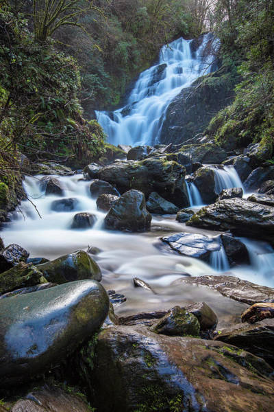 Photograph - Torc Waterfall Killarney National Park by John McGraw