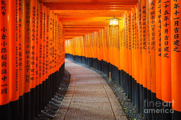 Wall Art - Photograph - Torii Gates In Fushimi Inari Shrine by Lkunl