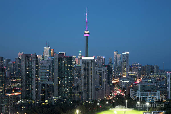 Wall Art - Photograph - Toronto Central Business District Skyline by Bill Cobb