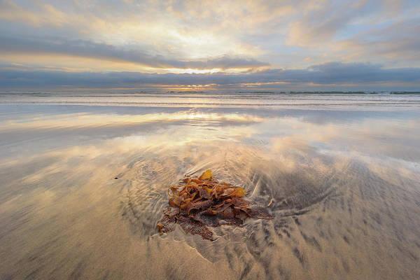Photograph - Torrey Pines - Christmas Day Sunset by Alexander Kunz