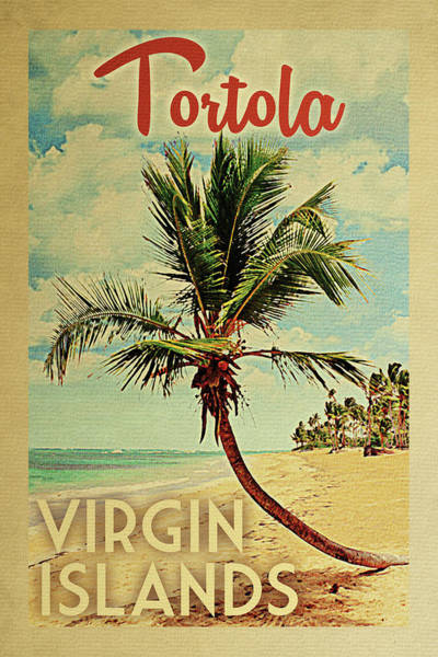 Tropics Digital Art - Tortola Virgin Islands Palm Tree by Flo Karp