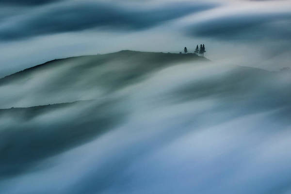 Photograph - Touch Of Wind by Evgeni Dinev