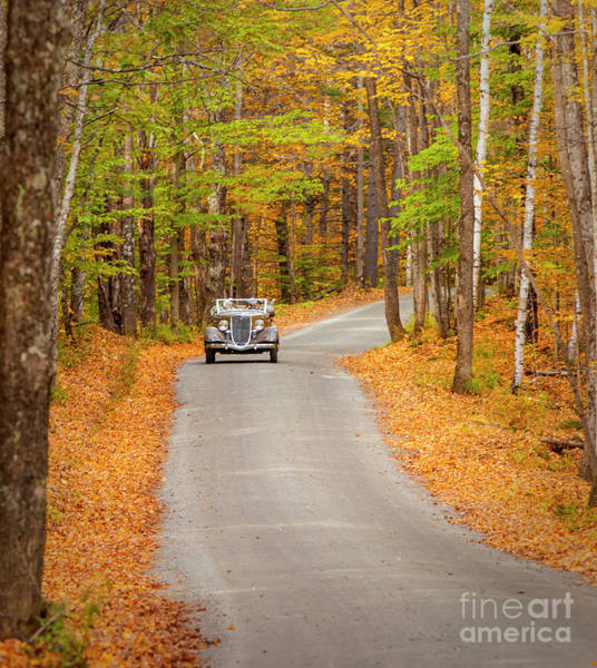 Photograph - Touring The Back Woods  by Brian Jannsen