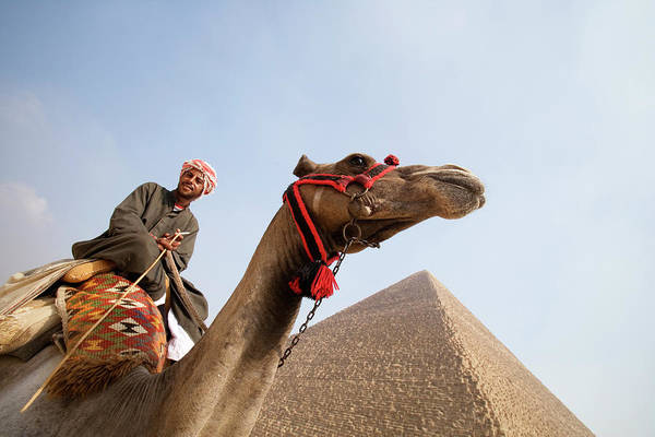 Mature Photograph - Tourist On Camel Near Pyramid by Holger Leue