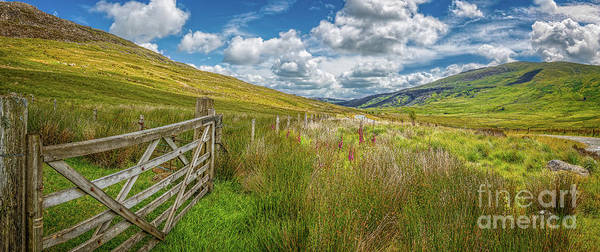 Wall Art - Photograph - Tourist Route Snowdonia by Adrian Evans