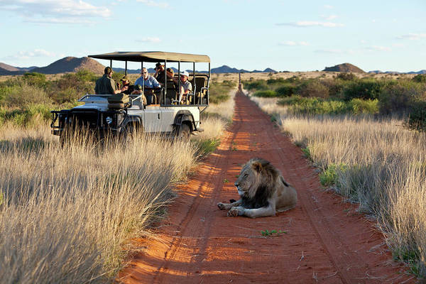 People Watching Photograph - Tourists In A Game Drive Vehicle by Martin Harvey
