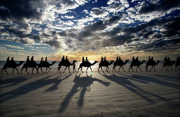 Broome Photograph - Tourists Riding Camels On Cable Beach by Cathy Finch