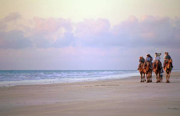 Broome Photograph - Tourists Riding Camels On The Beach by Travel Ink