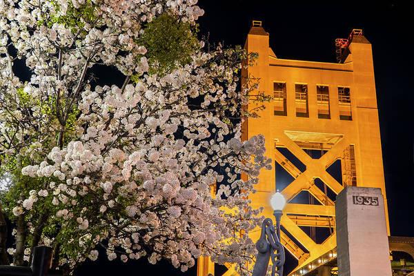 Photograph - Tower Bridge At Night by Jonathan Hansen
