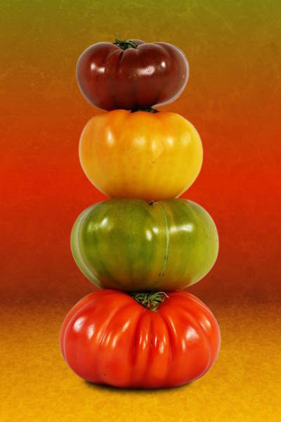 Photograph - Tower Of Colorful Tomatoes by Debi Dalio