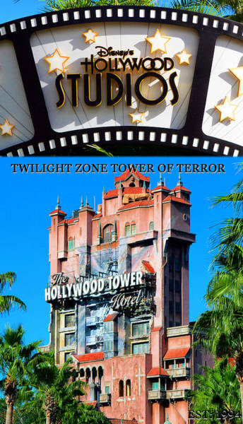 Wall Art - Photograph - Tower Of Terror Tall Poster by David Lee Thompson