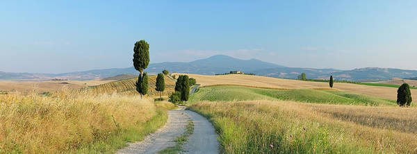 Wall Art - Photograph - Track Through Rolling Landscape by Martin Ruegner