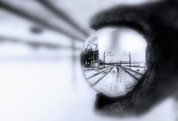 Photograph - Tracktion by Susan Maxwell Schmidt
