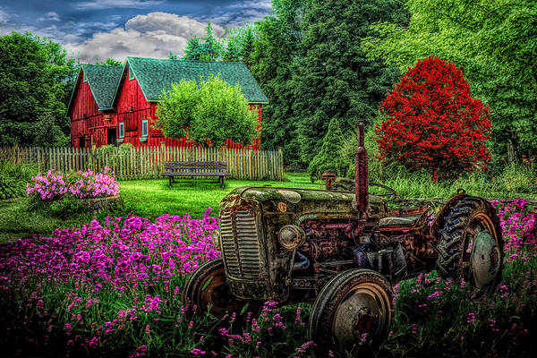 Photograph - Tractor In The Garden  by Debra and Dave Vanderlaan