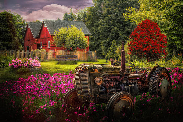 Photograph - Tractor In The Garden In Early Evening by Debra and Dave Vanderlaan