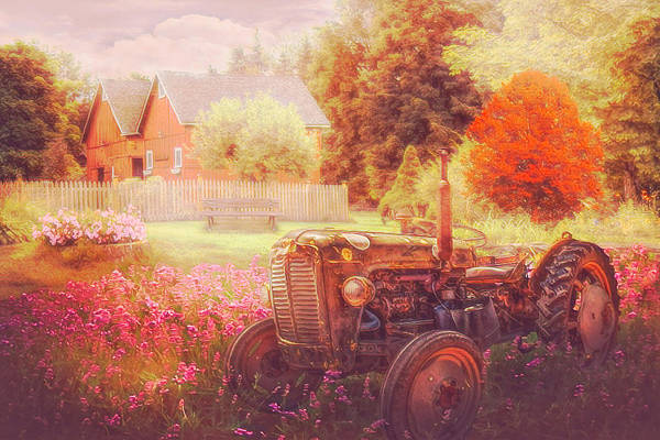 Photograph - Tractor In The Garden Nostalgic Colors by Debra and Dave Vanderlaan