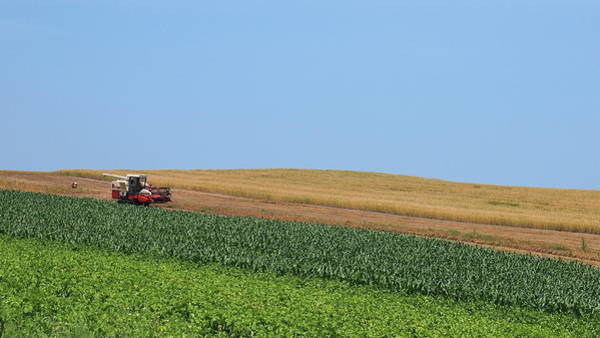 Wall Art - Photograph - Tractor On Field by Photo By Wei-ching Lee