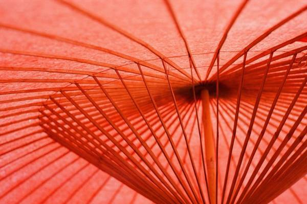 Parasol Photograph - Traditional Japanese Umbrella At Nikko by Nathan Keirn