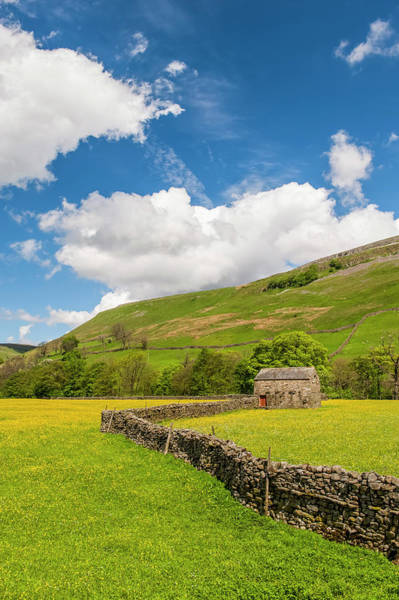 Wall Art - Photograph - Traditional Meadows In Swaledale by Uig