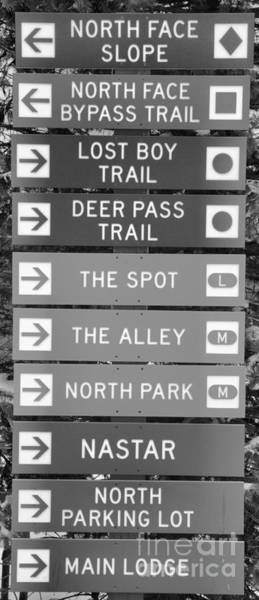 Somerset County Photograph - Trail Signs At 7 Springs Black And White by Adam Jewell