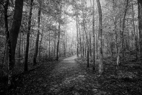 Wall Art - Photograph - Trail To Elijah Oliver's Cabin Black And White by Judy Vincent