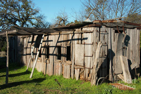 Photograph - Train Car Bunk House One by Bob Phillips