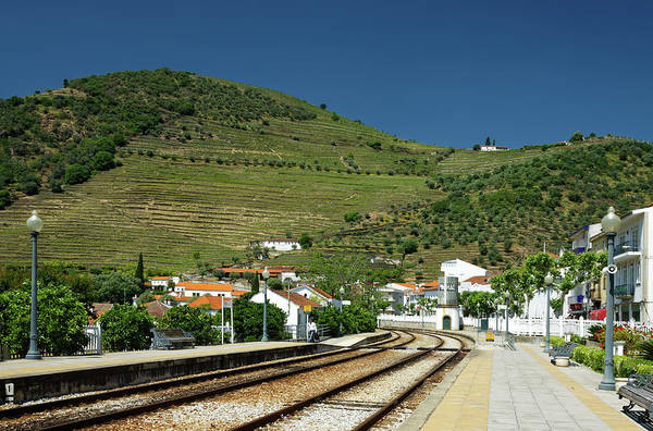 Wall Art - Photograph - Train Station And Vineyards by Sally Weigand