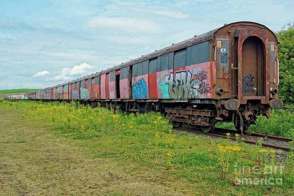 Photograph - Train To Nowhere. by David Birchall