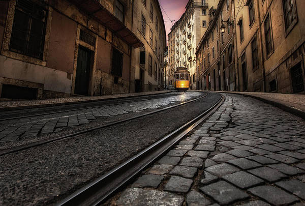 Photograph - Tram 28 by Jorge Maia