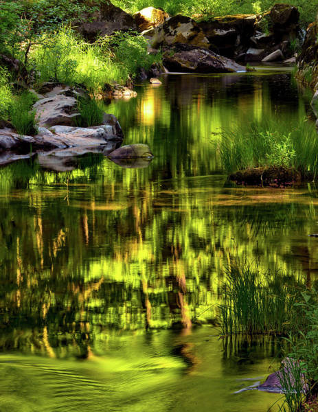 Photograph - Tranquil Coquille River by Leland D Howard