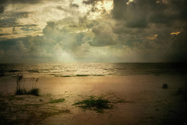 Photograph - Tranquil by Jai Johnson