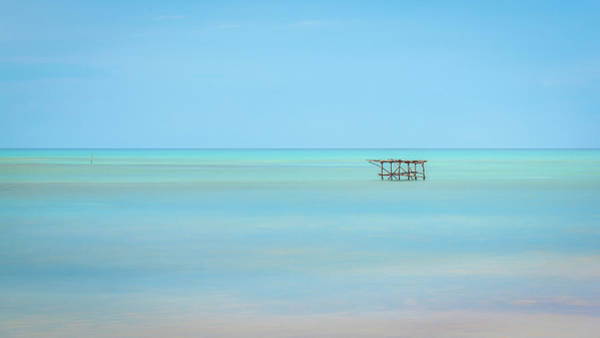 Photograph - Tranquility by Hamish Mitchell